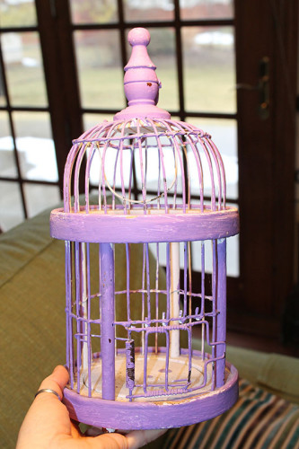 http://www.wonderstrange.com/wp-content/uploads/2015/03/0001-Purple-Birdcage-Better-333x500.jpg